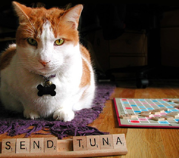 The Top 10 Highest Scoring 7 Letter Words You Use in Scrabble