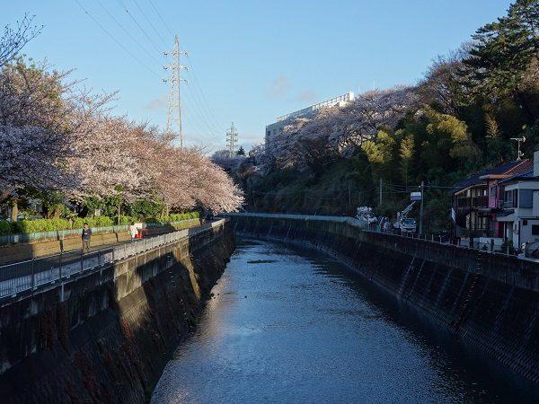 The River Ku