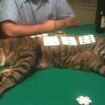 Ten Signs You Need to Spot Playing Poker (Just for Fun)