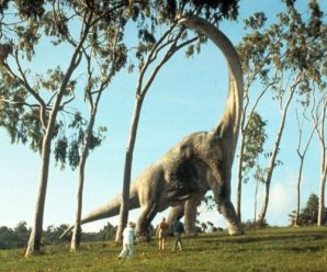 Ten of the Worlds Tallest Dinosaurs That Ever Lived