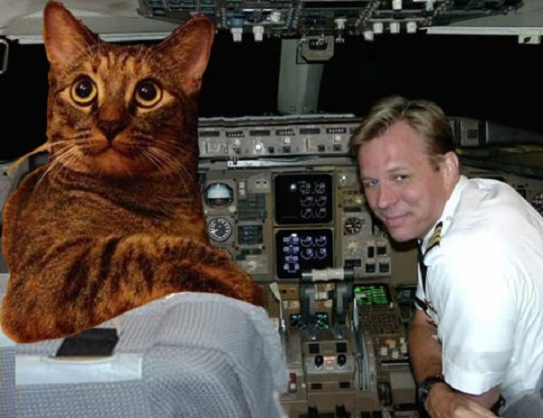 Cat Turned Into an Airline Pilot