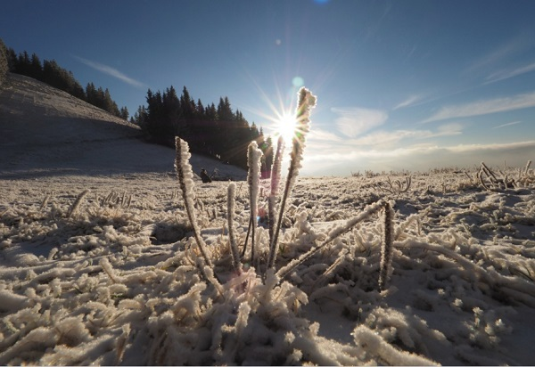 The Worlds Largest Cold Winter Deserts and Where to Find Them