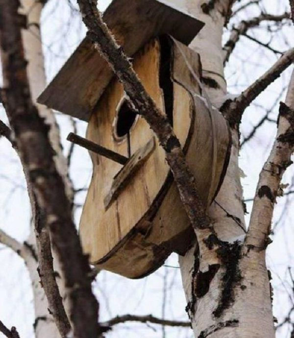Old Guitar Turned Into a Bird House