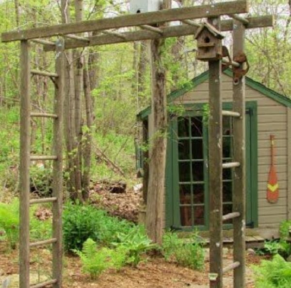 Old Wooden Ladder Used to Make a Garden Arbor