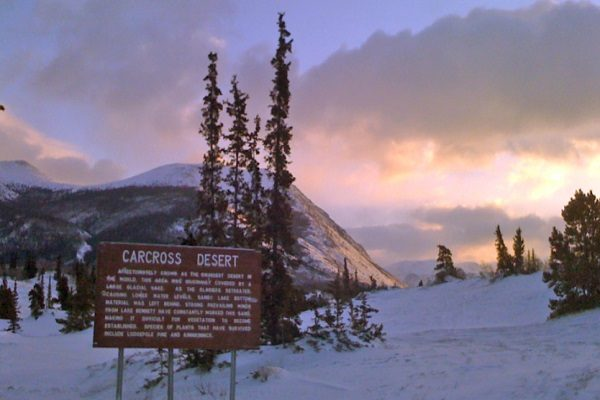Carcross Desert in Canada