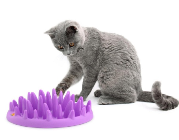 Interactive Slow Feeder Cat Bowl