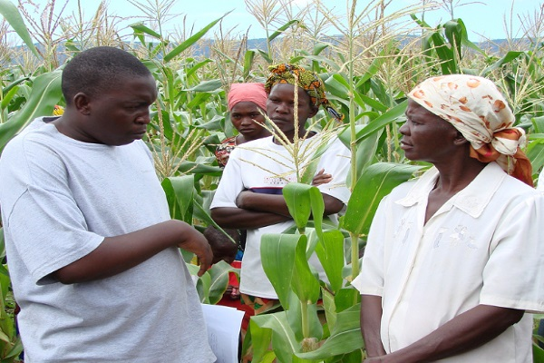 Organic farming is beneficial for rural farmers