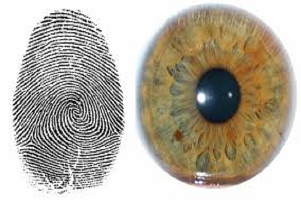 Fingerprint or Iris Scan