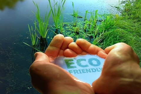 Ten Eco-Friendly Lawn Care Tips for Your Garden
