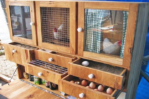 A Chicken Coop Made From a Kitchen Cabinet