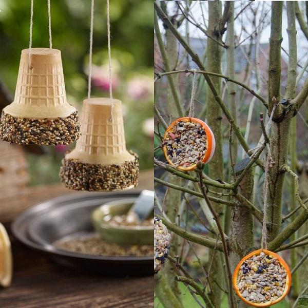 A Bird Feeder Made From Throw Away Food