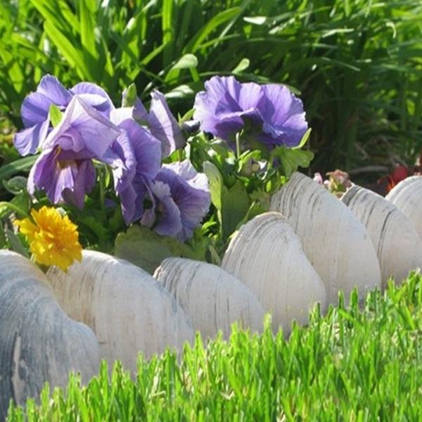 A Garden Border Made From Seashells