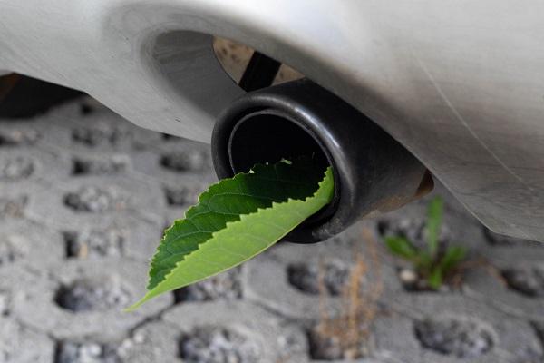 Buy a More Fuel-Efficient Car