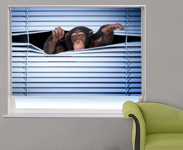 Peeking Monkey Roller Blind
