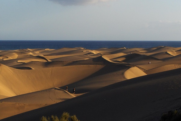 Things to Do if You Visit the Canaries - Dunes of Maspalomas