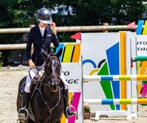 The Top 10 Pieces of Equipment Every Equestrian Needs