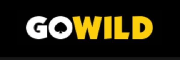 Online Casinos in New Zealand - Go Wild