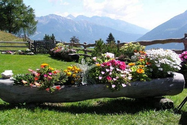 Large Garden Planter Made From a Tree Trunk