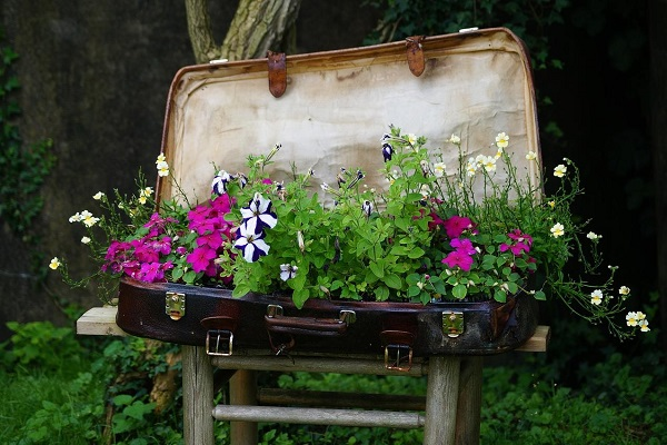 Large Garden Planter Made From a Suitcase