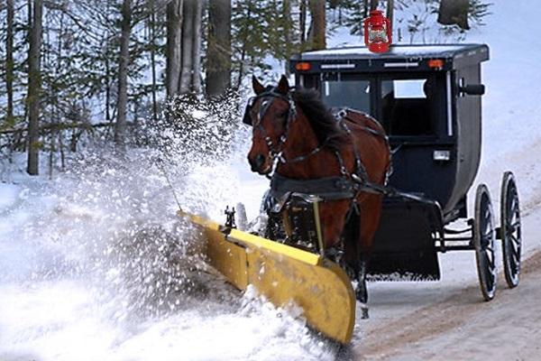 Horse Power Plougher