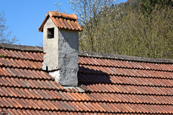 5. Protect Your Roof