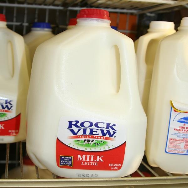 Lager Water or Milk jugs