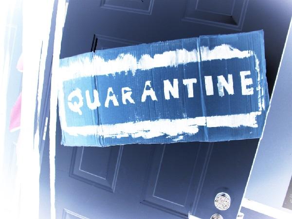 Quarantine The New Reptiles