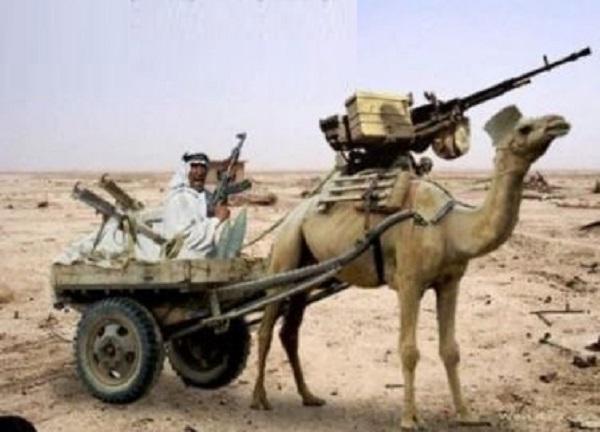 The War Of Camel