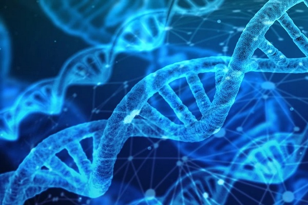 Ten Times a Simple DNA Test Revealed Shocking Truths