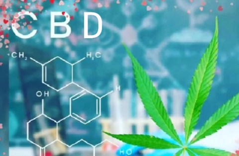 Is CBD the Right Choice For Me? Ten Things To Consider Before Buying