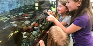 Nature Center Fun