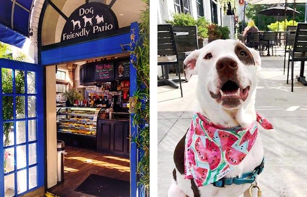 Bread Winners Cafe & Bakery