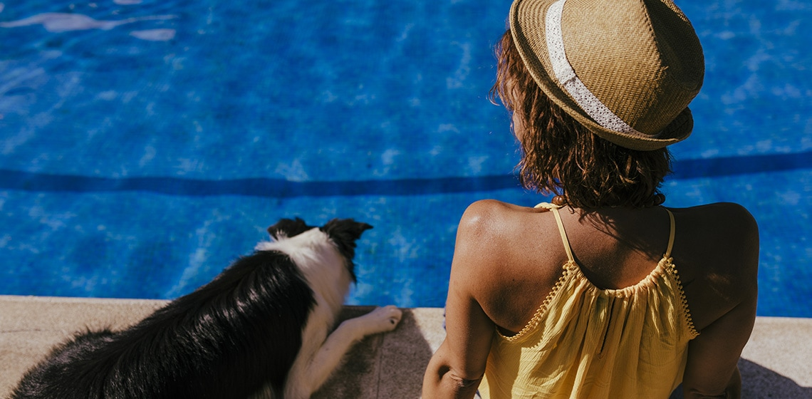 summer vacation with dog