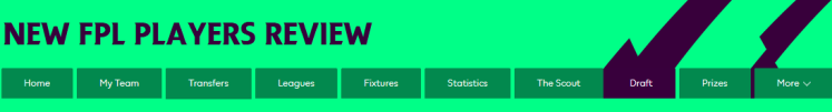 New FPL Players Review 1024x138 - The 2018/19 Fantasy Premier League Guide