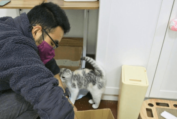 The Guardian Meets The Catman Of Wuhan, Who's Saving Left-Behind Pets image of Wuhan