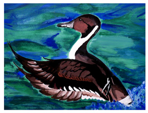 remi-duck