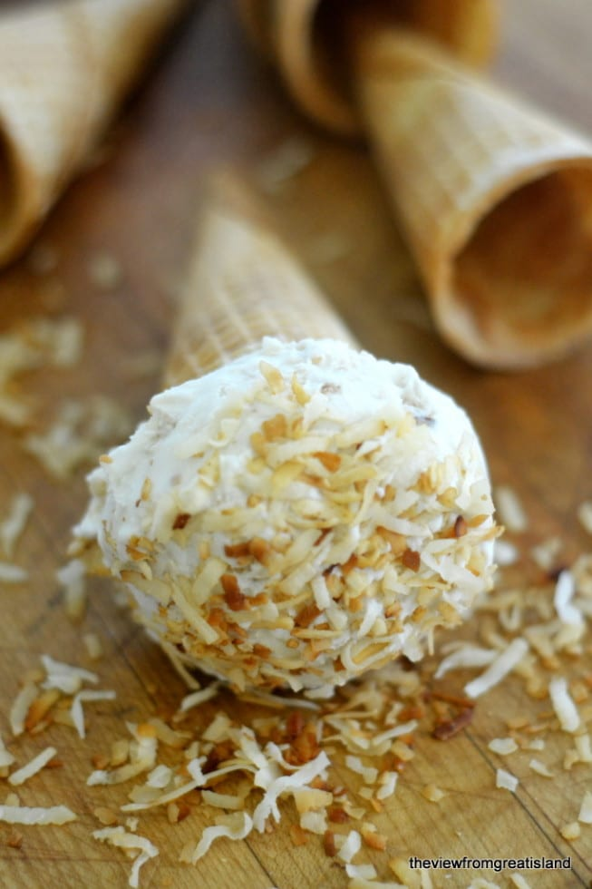Vegan Toasted Coconut Ice Cream is totally dairy free and full of coconut flavor!