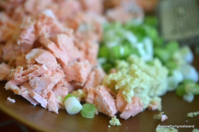 Salmon Gyoza 6