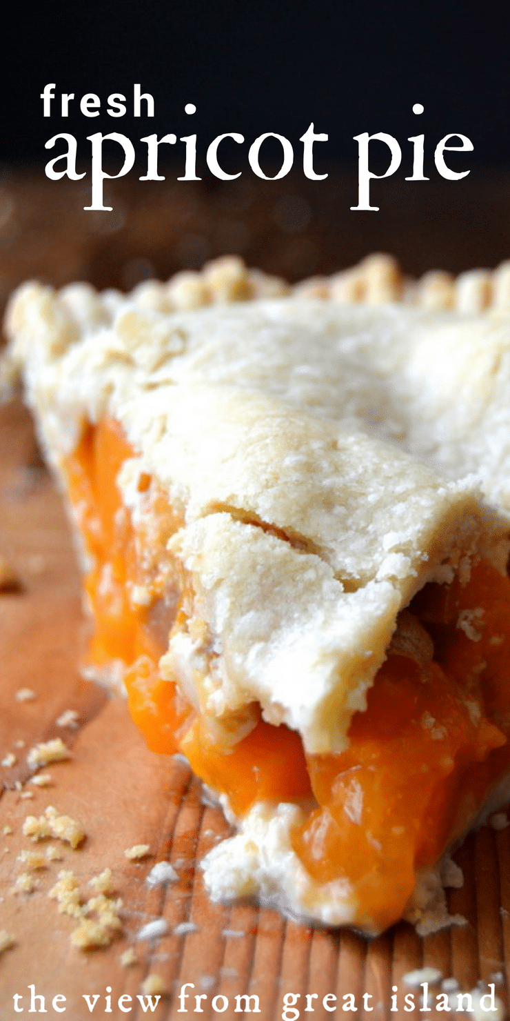 Apricot Pie ~ juicy ripe apricots cooked up in a flakey pie crust ~ the perfect summer dessert! #pie #apricot #summer #homemade #pastry #piecrust #fromscratch #dessert #best #easy