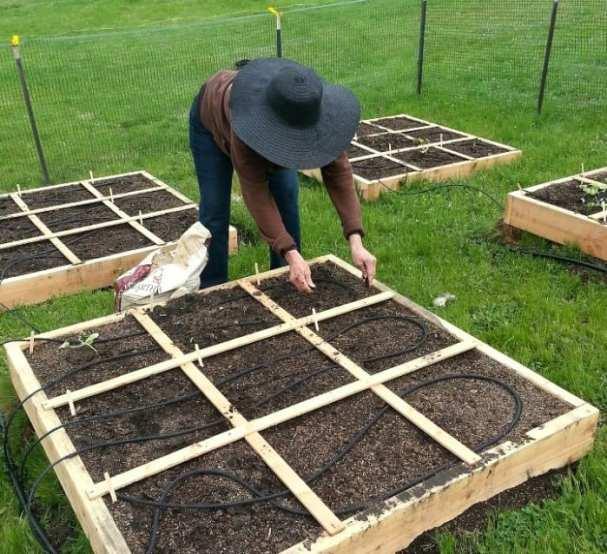 Mia planting raised bed 720