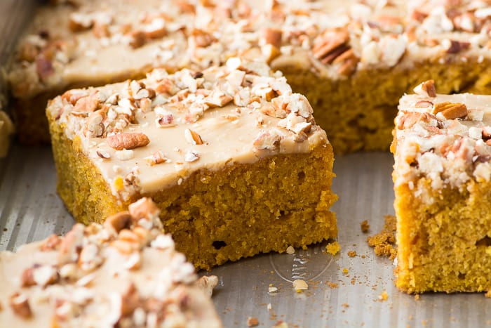 Praline Pumpkin Cake is a delicious way to kick off the season, it's a moist, softly spiced cake with a pecan caramel frosting that gets raves from everybody! | theviewfromgreatisland.com