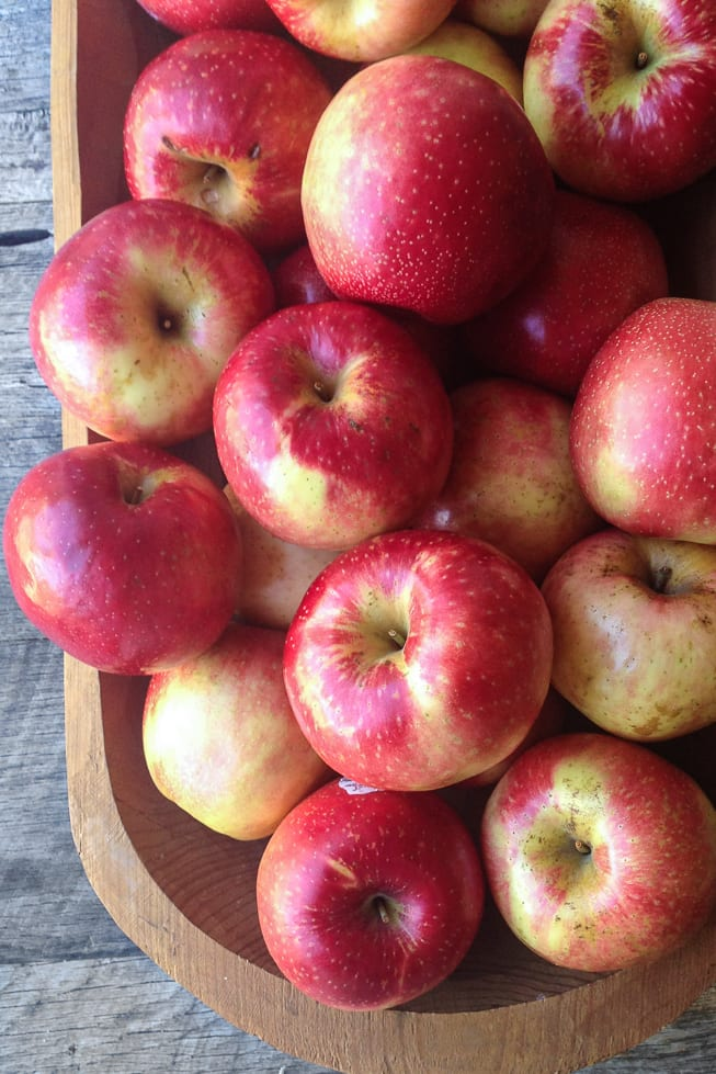 Sweetango apples for Baked Brie with Maple, Apples, and Pecans ~ theviewfromgreatisland.com