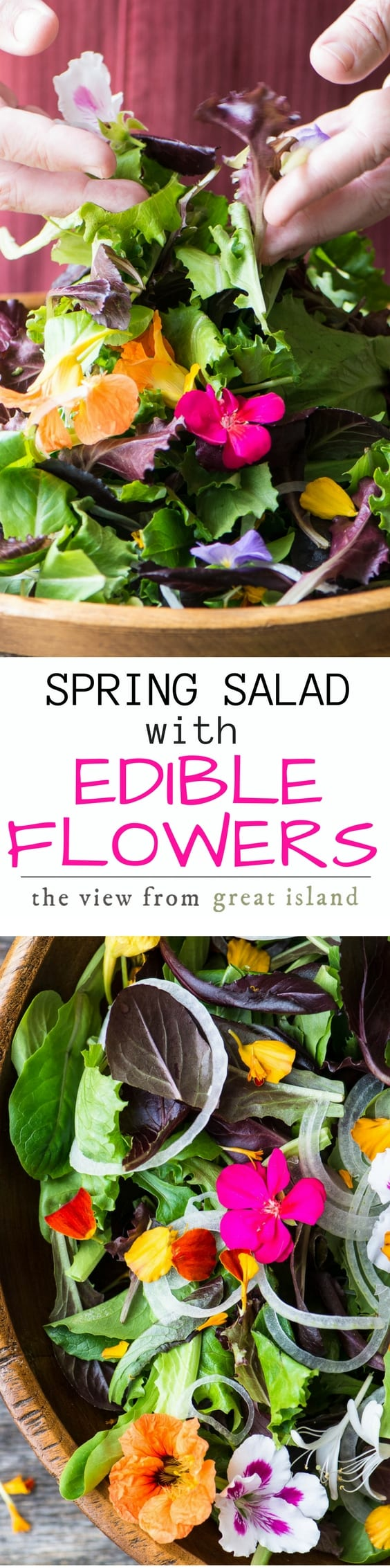 Spring Salad with Edible Flowers ~ this simple side dish is spring in a bowl ~ I'll show you how to identify, source, and use edible flowers to make this celebratory salad for weddings, showers, holidays, or any spring gathering. #salad #edibleflowers #kale #pansies #springsalad #easter #mothersday #passover #sidedish #nasturium, #healthy #glutenfree #paleo #whole30 #weightwatchers #vegan #vegetarian