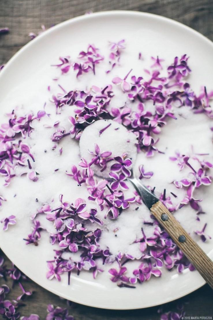 lilac sugar body scrub
