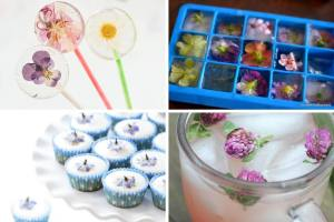 A collage of Edible Flower Recipe photos