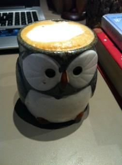 Owlccino