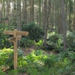 What's on, days out and events at Rushmere Country Park Buckinghamshire