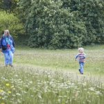 May Wildlife Walk