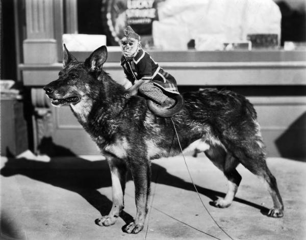 Rin Tin Tin and friend
