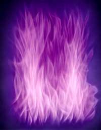 violetflameweb.jpg (9222 bytes)